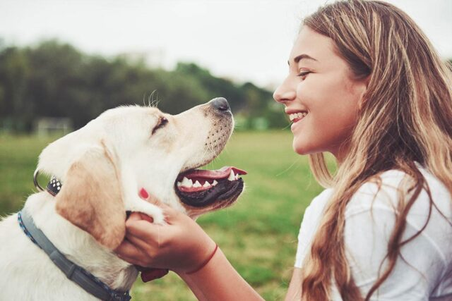 hund älskar dig